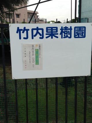 竹内果樹園の梨
